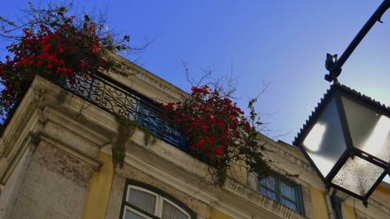 Les cieux de Lisbonne - The heaven of Lisbon